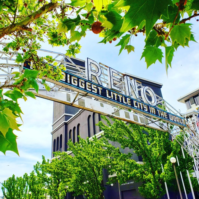 Top Things That You Should Not Miss Out In Reno With Kids